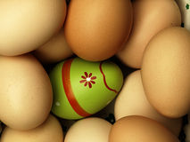 Colorful Easter eggs in the company of ordinary eggs. Royalty Free Stock Image