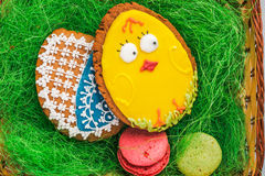 Colorful easter eggs and  cookies in basket Royalty Free Stock Images