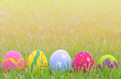 Colorful Easter eggs decorated with flowers in the grass. On a yellow background Royalty Free Stock Photo