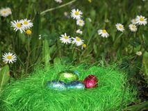 Colorful Easter eggs decorated in the grass Stock Images