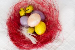 Colorful  Easter eggs in decorative red nest  on white tablecloth Royalty Free Stock Photo