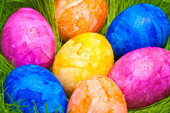 Colorful easter eggs with dew drops hidden in the grass Royalty Free Stock Image