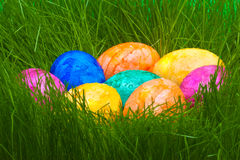 Colorful easter eggs with dew drops hidden in the grass Royalty Free Stock Photo