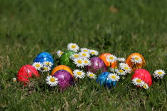 Colorful Easter eggs in easter basket. The Colorful Easter eggs in easter basket Royalty Free Stock Photos