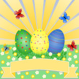 Colorful Easter eggs on flower meadow with butterflies. In front of the sun with a large copyspace below Stock Photos