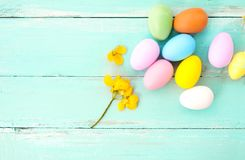 Colorful Easter eggs with flower on rustic wooden planks background in blue paint. Stock Image