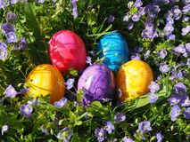 Colorful easter eggs with flowers royalty free stock images
