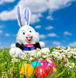 Colorful Easter eggs with funny Easter bunny lying in grass. Beautiful view of colorful Easter eggs with funny Easter bunny in the background lying in the grass Royalty Free Stock Photo