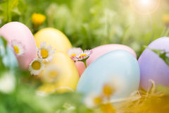 Colorful Easter eggs in the garden Stock Photography