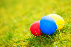 Colorful easter eggs in grass Stock Photos