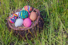 Colorful easter eggs in  grass nest. Stock Photo