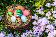 Colorful easter eggs in grass nest. Royalty Free Stock Image