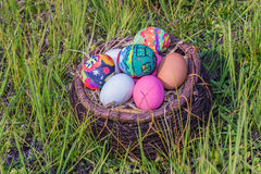 Colorful easter eggs in  grass nest. Royalty Free Stock Photos
