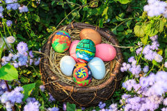 Colorful easter eggs in grass nest. Stock Image