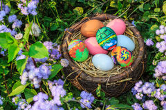 Colorful easter eggs in grass nest. Royalty Free Stock Photo