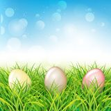 Colorful Easter eggs in grass. Spring landscape. With blue sky. Greetig card template. Spring easter design Stock Image