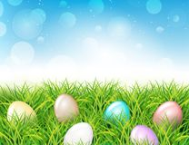 Colorful Easter eggs in grass. Spring landscape. With blue sky. Greetig card template. Spring easter design Royalty Free Stock Images
