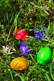 Colorful Easter eggs in green grass Royalty Free Stock Photography