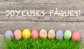 Colorful easter eggs in green grass. Funny decoration french. Colorful easter eggs in green grass. Funny holidays decoration. Joyeuses Pâques - Happy Easter Royalty Free Stock Image