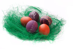 Colorful Easter Eggs in a green grass nest Royalty Free Stock Photography