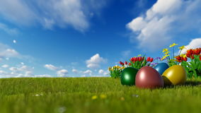 Colorful Easter eggs on green meadow with spring flowers over blue sky stock video