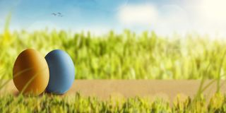 Colorful easter eggs in a green, sunny scenery. Two colored easter eggs surrounded by green grass and a sunny sky. Panoramic image with a lot of copy space Stock Images