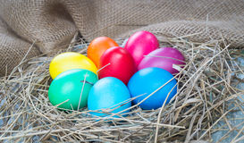Colorful easter eggs in hay on sackcloth background Stock Image
