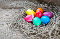 Colorful easter eggs in hay on sackcloth background Royalty Free Stock Photo
