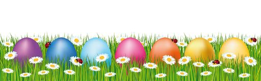 Colorful easter eggs hidden in a field. Spring banner with daisies and ladybugs. Colorful easter eggs hidden in a field. Spring vector banner with daisies and Stock Photos