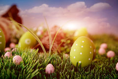 Colorful Easter Stock Image