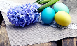 Colorful easter eggs with hyacinth in a nest Royalty Free Stock Image