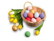 Colorful easter eggs isolated on white. Color colorful easter eggs green white background vector illustration