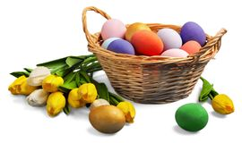 Colorful easter eggs isolated on white. Color colorful easter eggs green white background stock illustration