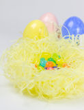 Colorful easter eggs and jelly belly in nest. Colorful easter eggs and jelly belly in the nest Royalty Free Stock Photos
