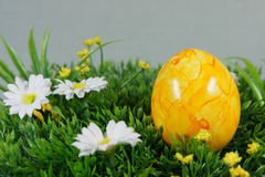 Colorful easter eggs. On a lawn of artificial green royalty free stock images