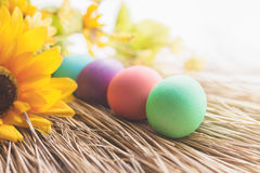 Colorful Easter eggs laying on a straw. With some yellow flowers royalty free stock photography