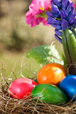 Colorful easter eggs lying in a nest Royalty Free Stock Photos