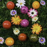 Colorful Easter eggs meadow. Coloured eggs laying in a meadow with flowers Stock Photography