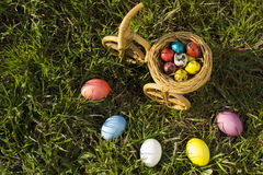 Colorful easter eggs and narcissus in easter nest Stock Photo