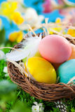 Colorful Easter Eggs in a nest Royalty Free Stock Photography