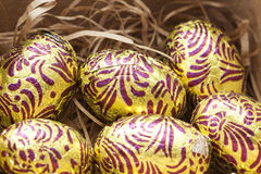 Colorful easter eggs in nest Royalty Free Stock Photos