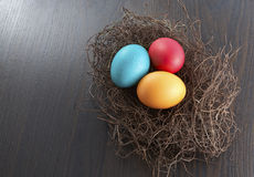 Colorful easter eggs in nest Royalty Free Stock Image