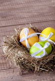 Colorful easter eggs in a nest Stock Images