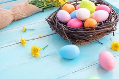 Colorful Easter eggs in nest with Bouquet of yellow chrysanthemum on blue wooden background. royalty free stock images