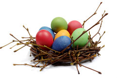 Colorful Easter eggs in nest from branches Royalty Free Stock Image