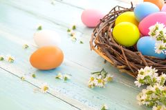 Colorful Easter eggs in nest with flower on rustic wooden planks background. Royalty Free Stock Photography