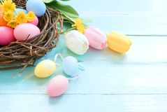 Colorful Easter eggs in nest with flowers on blue wooden background. Royalty Free Stock Photos