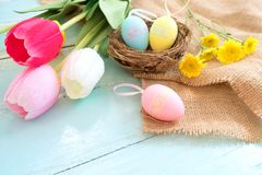 Colorful Easter eggs in nest with flowers on blue wooden background. Stock Image