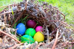 Easter eggs on the green grass stock images