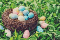 Colorful easter eggs and nest on green grass with sunlight. vintage toned royalty free stock photos